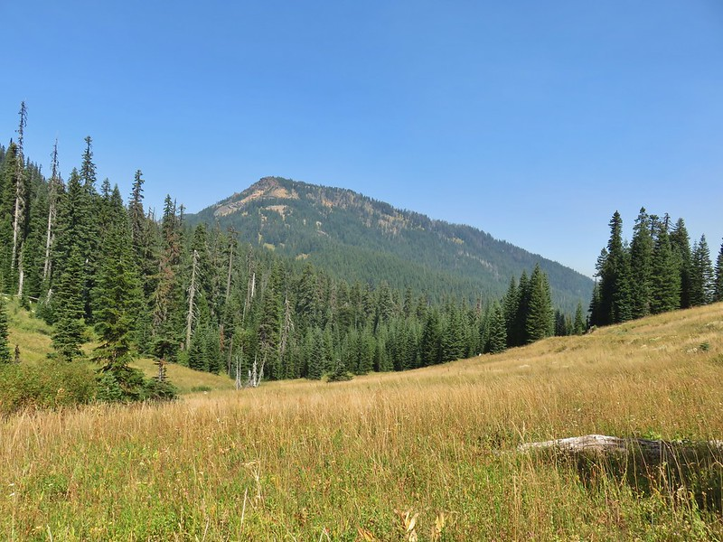 Rattlesnake Mountain from the Rogue-Umpqua Divide Trail