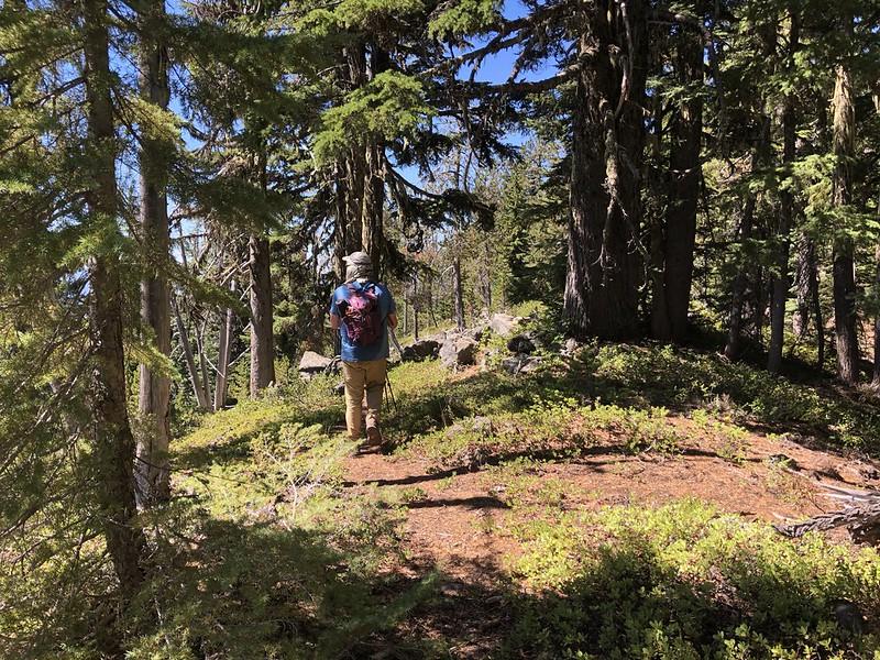 Heading up Horse Mountain