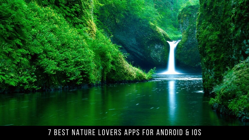 7 Best Apps For Nature Lovers Android & iOS