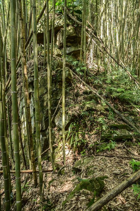 南勢山東南峰斷頭稜巨岩下岔路 (1)