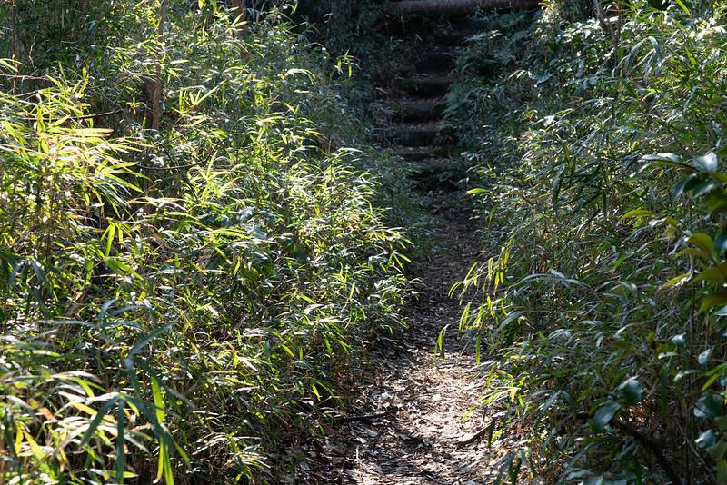 衣張山のハイキングコース