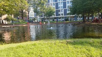 Southwest Duck Pond
