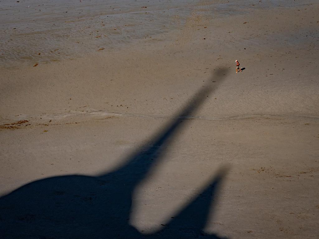 Dans l'ombre du Mont (St Michel)... 50323027618_59ce040b95_b