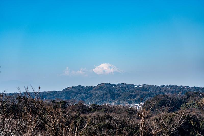 鎌倉市からの富士