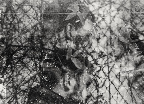 Holga 35mm multiple exposure with a lense filter