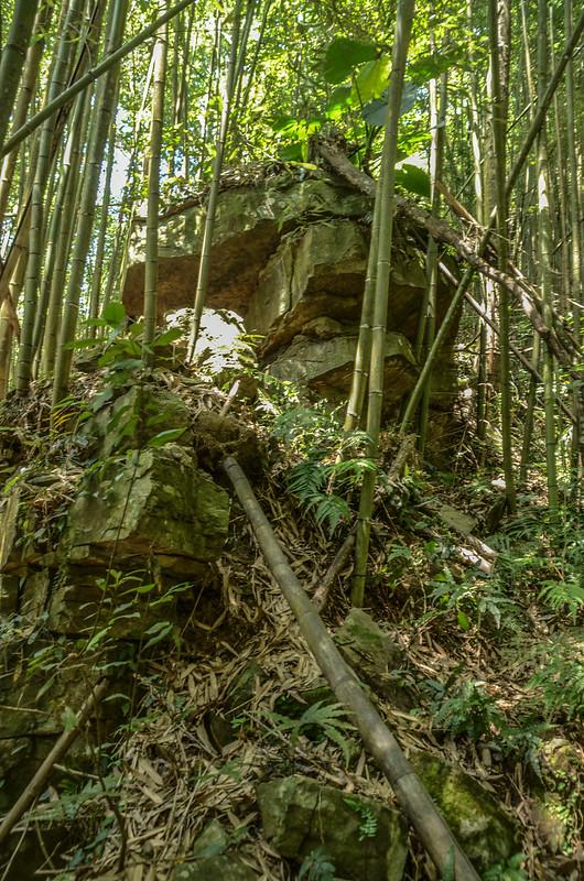 南勢山東南峰斷頭稜巨岩下岔路 (2)