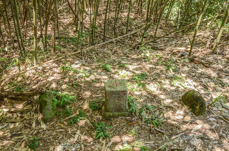 南勢山三等三角點(# 6631 Elev. 1039 m) (2)