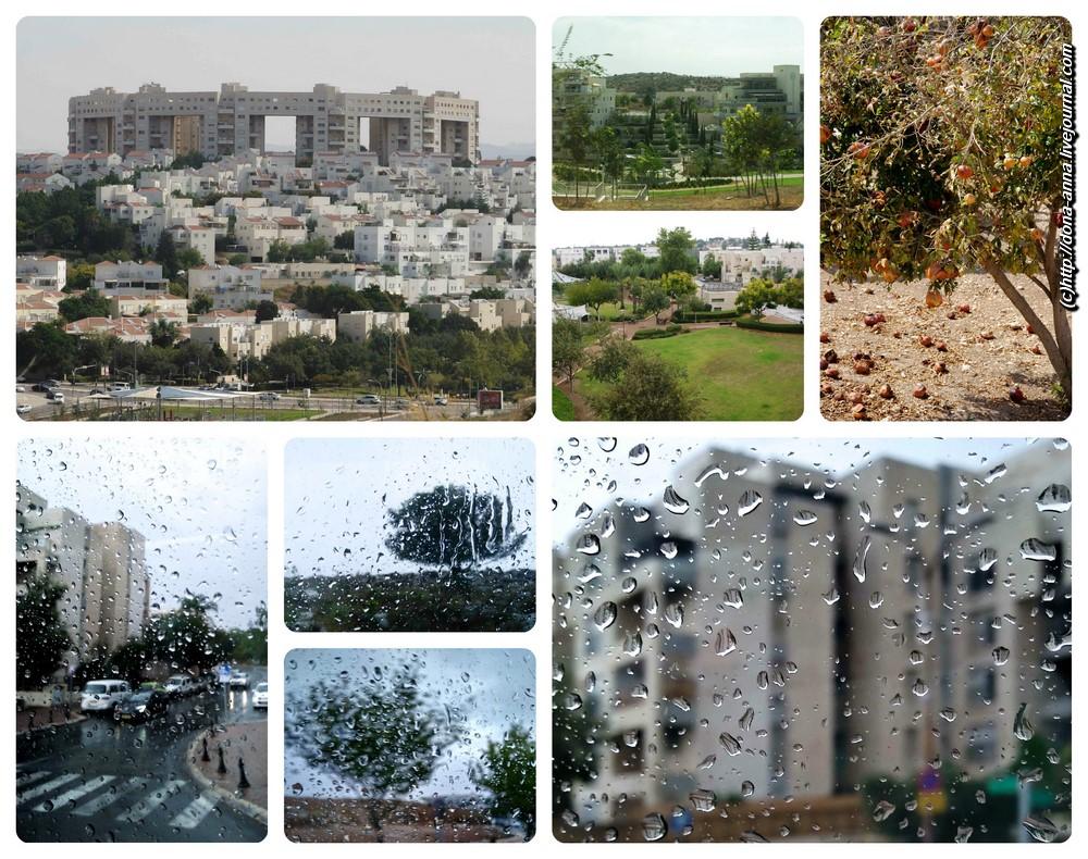 Modiin-collage-a