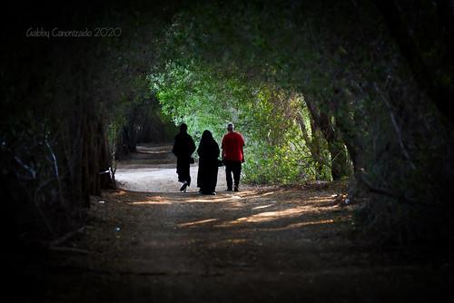 """Tunnel Walk"""