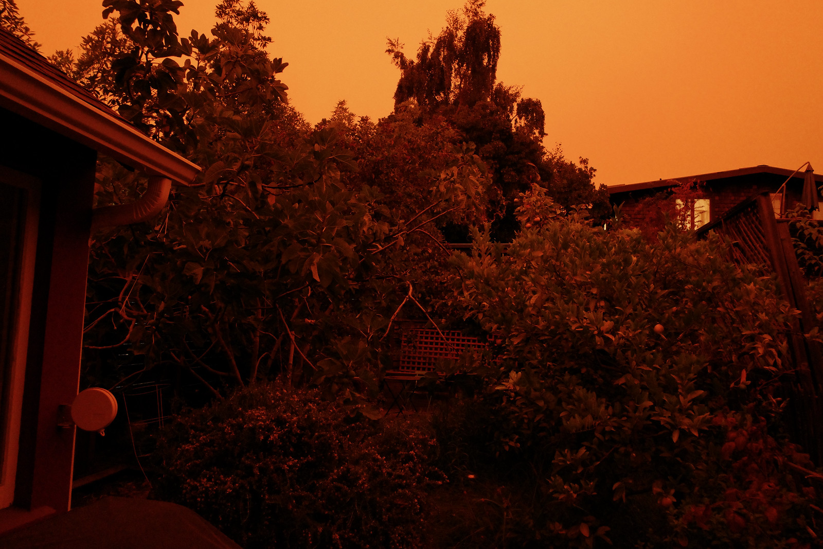 apocalyptic orange skies
