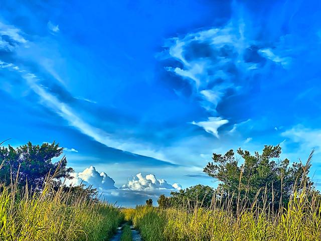 Levee Trail 02-20200908