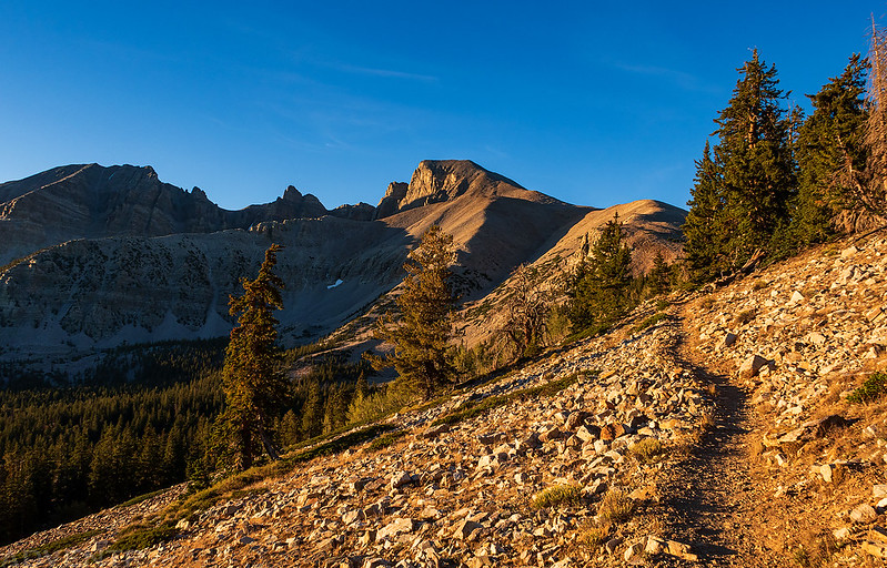 Trail to the Saddle