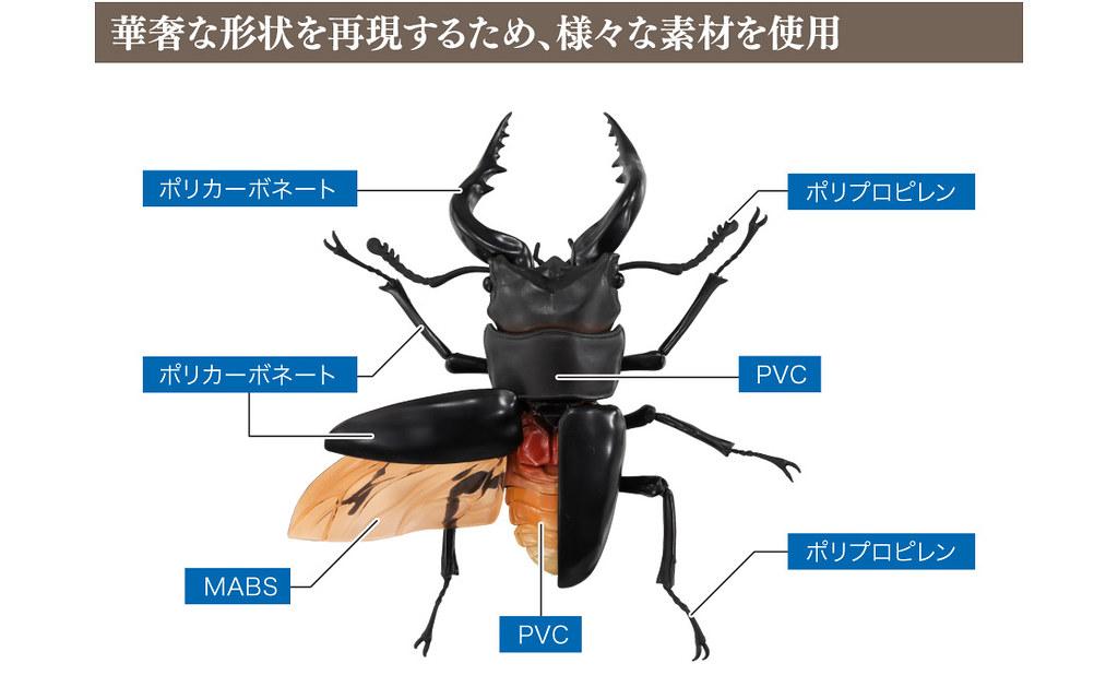 GASHAPON 昆蟲圖鑑超擬真「鍬形蟲」環保扭蛋 超人氣甲蟲14公分登場!