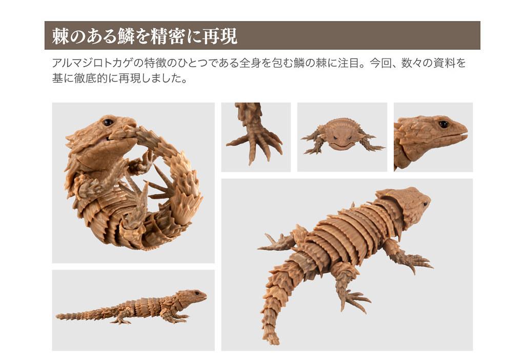 GASHAPON 超擬真環保轉蛋「團子蟲07 犰狳蜥篇」咬著尾巴捲成一圈的萌獸鎧甲龍來啦~!