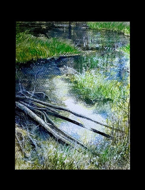 Woodland Lake. North Wales. Watercolour study by jmsw,