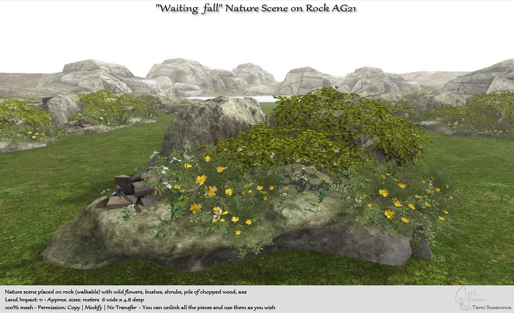 ".:Tm:.Creation ""Waiting fall"" Nature Scene on rock AG21"