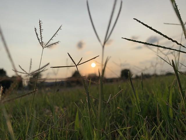 September Sun Setting