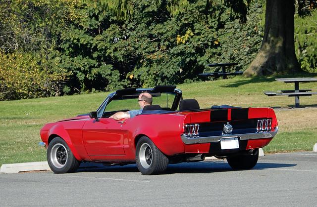 Ford Mustang Convertible (AJM CCUSA)