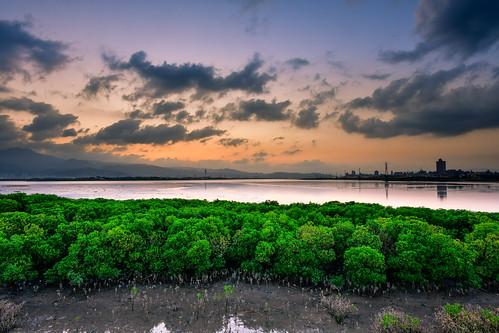 taiwan newtaipeicity wugu danshuiriver sunrise dawn outdoors 台灣 新北市 五股區 台北水沙連 晨曦 日出 sky cloud 天空 水筆仔