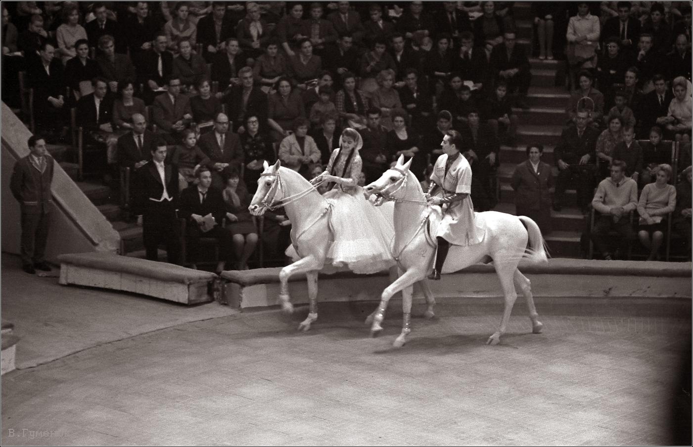 142. 1964. Цирк. Наездники