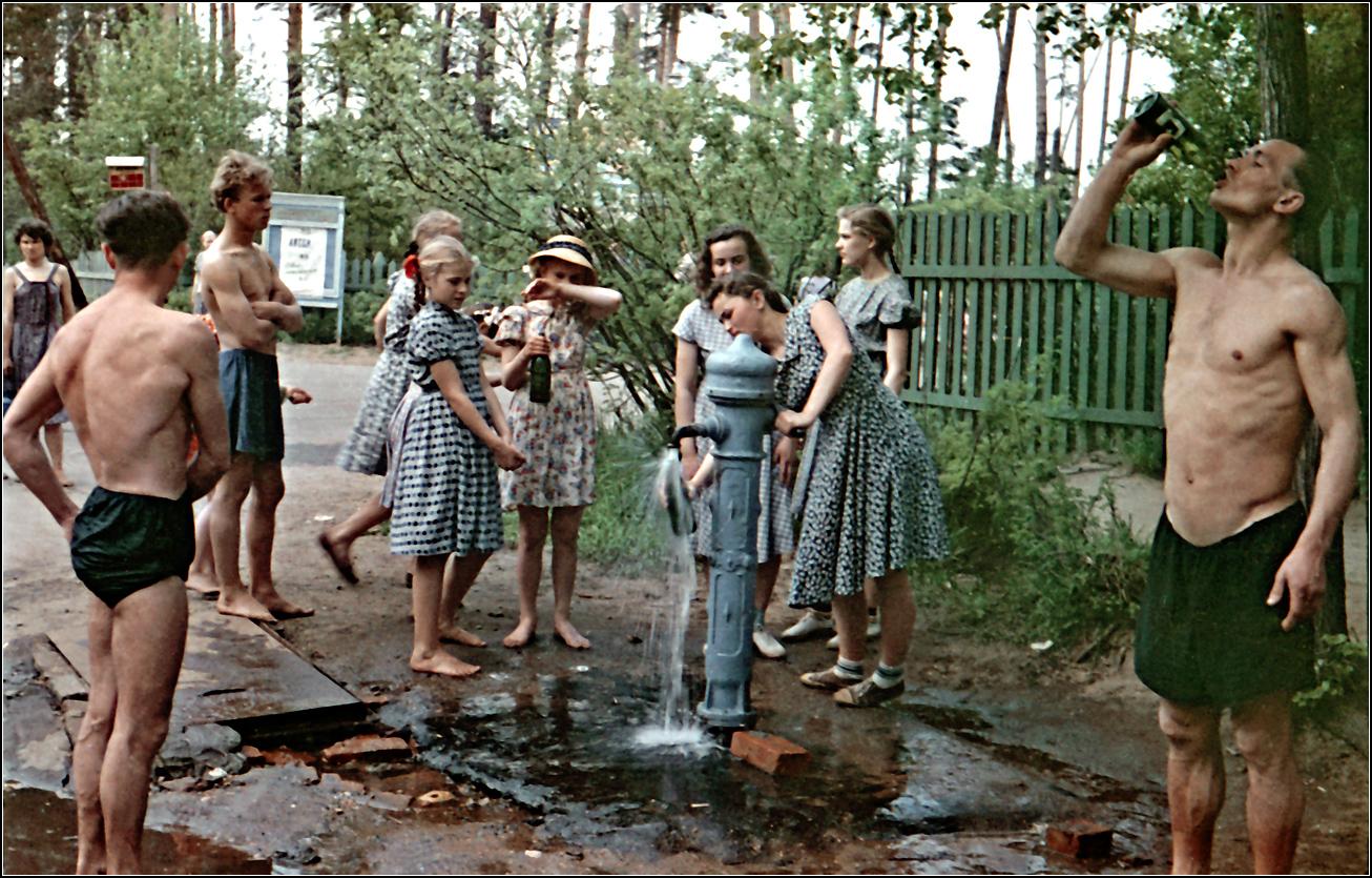 123. 1957. Серебряный бор, лето