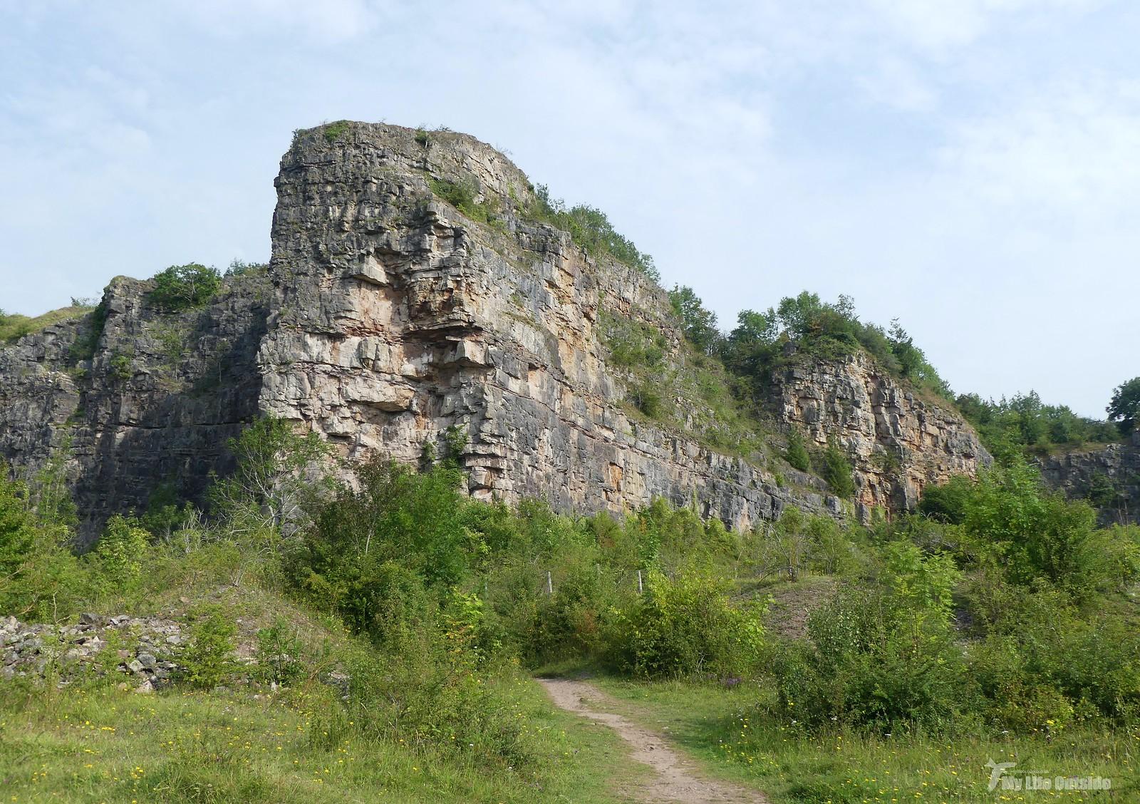 P1240745 - Llanymynech Rocks