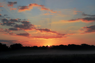 IMG_1663 - Sunrise - New Forest - 10.09.20 | by Colin D Lee