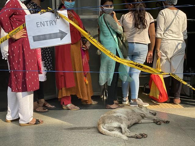 Delhi Metro - First Pandemic-Era Ride, Yellow Line