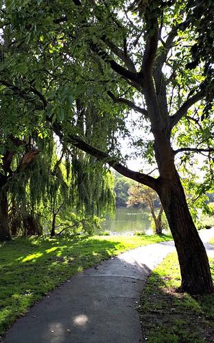 radnorgardens twickenham green londonboroughofrichmond lbrut peace tranquil park weepingwillow tree footpath riverthames ©peterdenton sunlightandshade