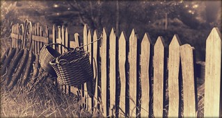 My Side of the Fence | by B L A I Z E !