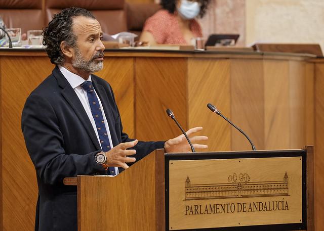 Pablo Venzal - Parlamento de Andalucía