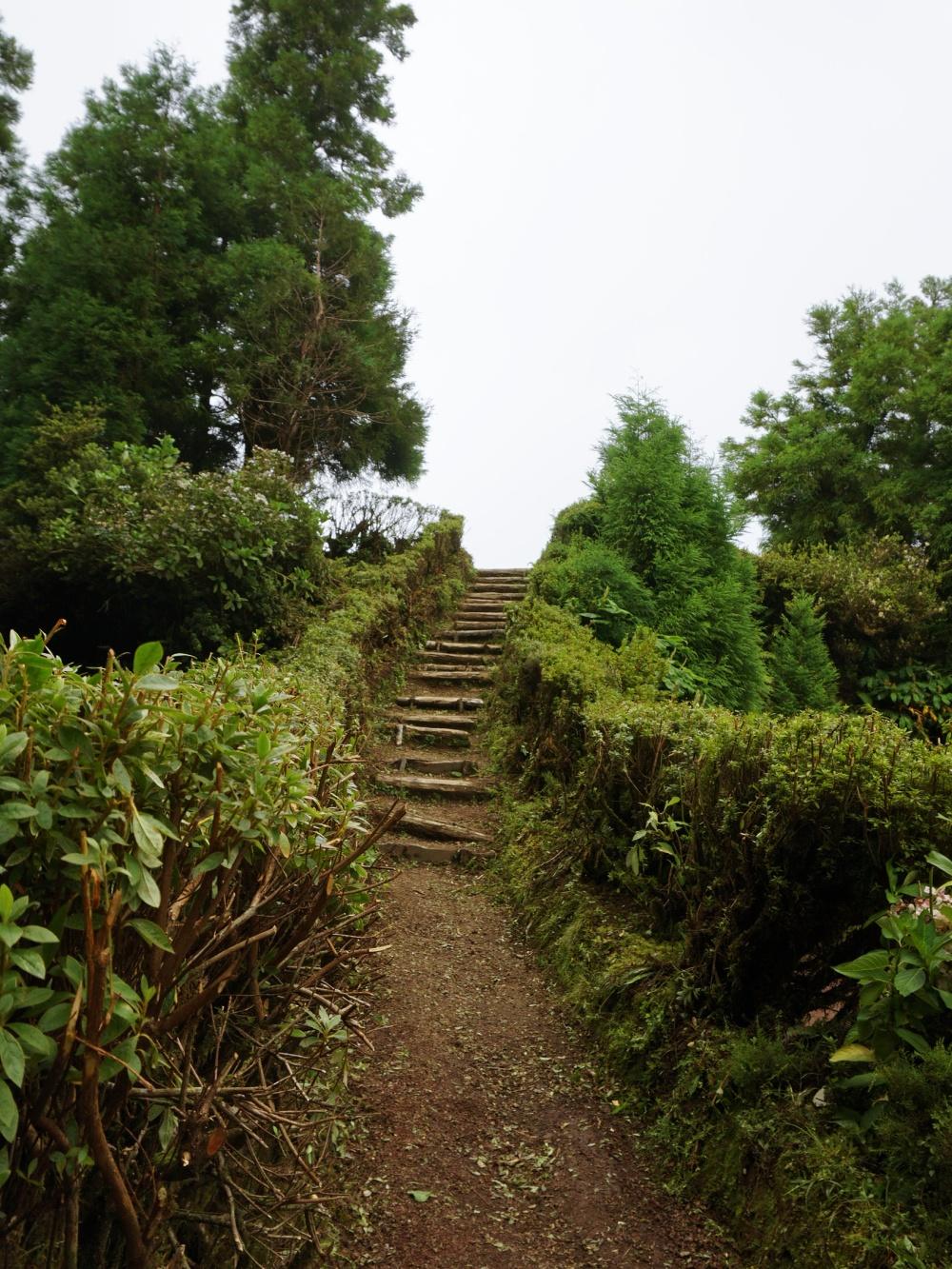 Miradouro de Candelaria Azores