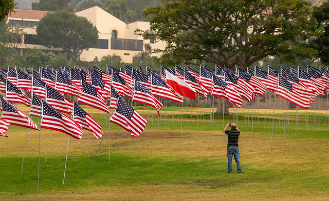 Waves of Flags