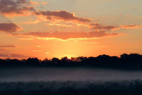 IMG_1662 - Sunrise - New Forest - 10.09.20 | by Colin D Lee