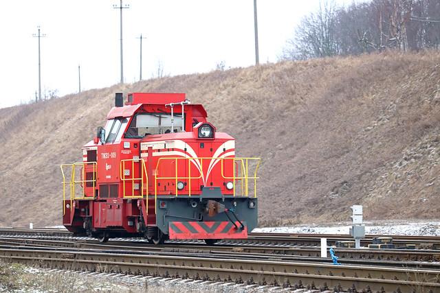 Маневровый тепловоз ТМЭ3-009 на станции Могилёв-1 (Беларусь).