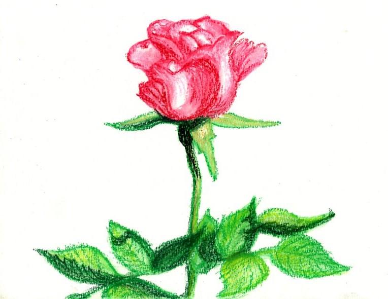 http://live.staticflickr.com/65535/50327920367_dd9de50a6e_o.jpg://