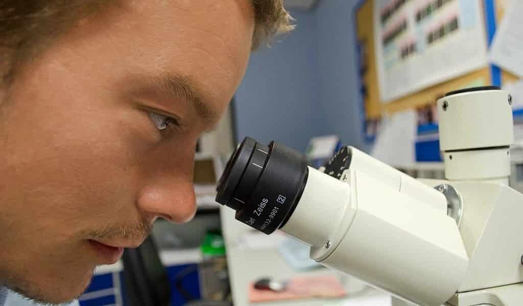 un-gel-générateur-oxygène-pour-la-bio-impression