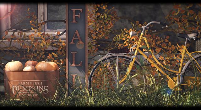 What Next - Copper Fall Sign & Pumpkins