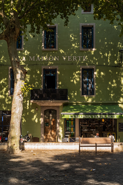 La Maison verte (Summer of 20)