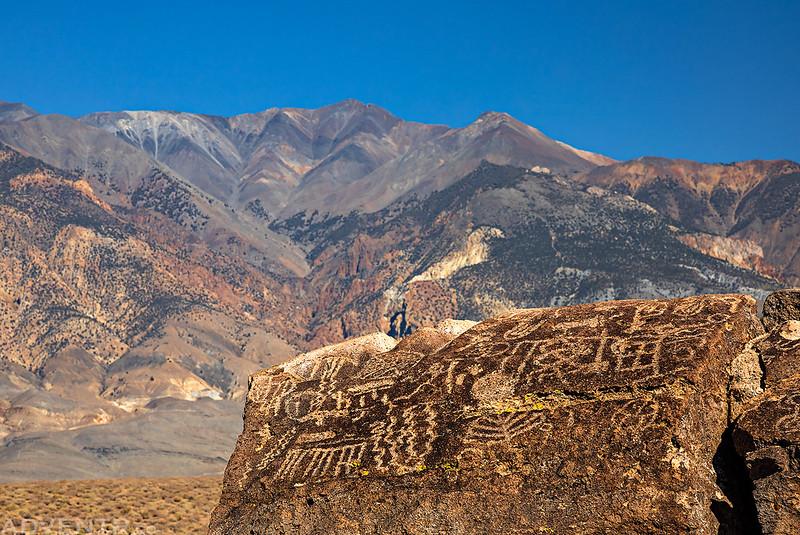 Petroglyphs & White Mountain Peak