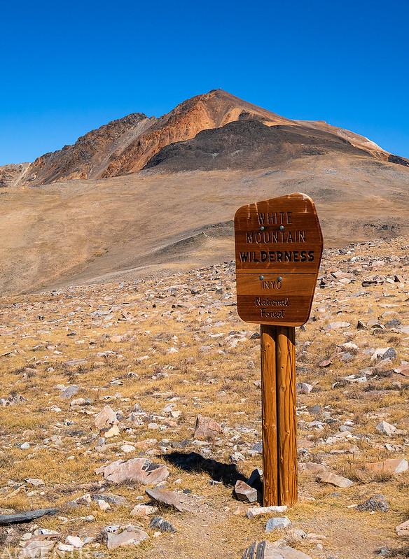 White Mountain Wilderness Sign