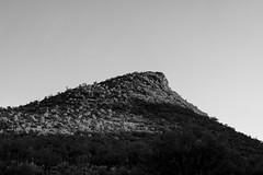 2020 09 Point 2614 in the Samaiego Hills