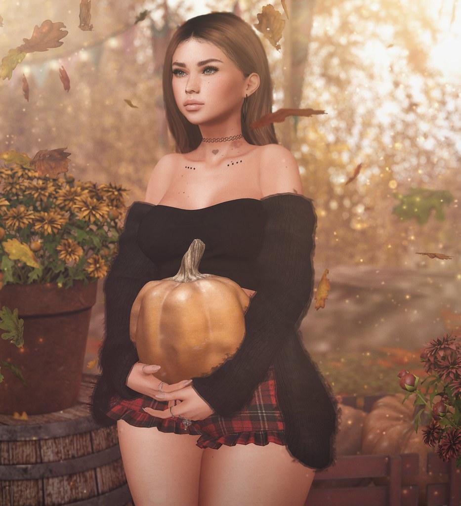 Picking a pumpkin.