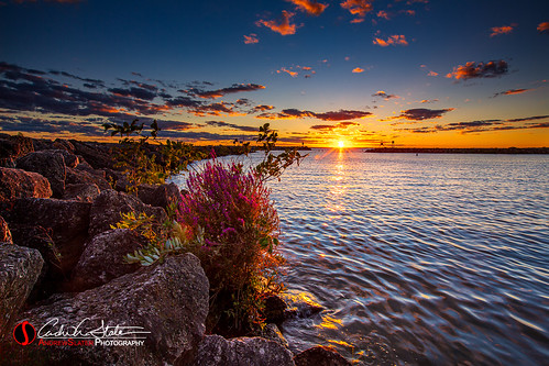 camp camping clouds discoverwisconsin events flower highcliffstatepark lakewinnebago landscape marina place plant plants slater sunset tent travelwisconsin water wisconsin sherwood unitedstates canon 5dmarkiii