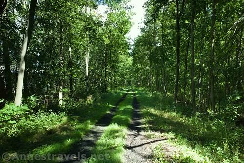 The Sodus-Wallington Trail, New York