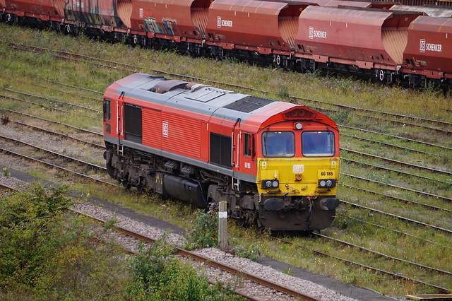 DB Cargo Class 66 (66185) at Tees Marshalling Yard