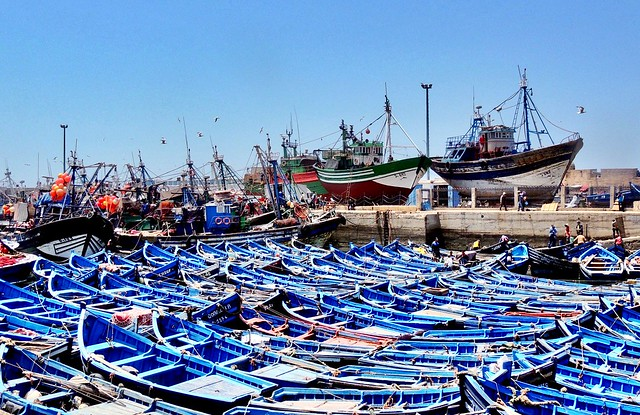 Fisher boats in Essaouira harbour, Morocco