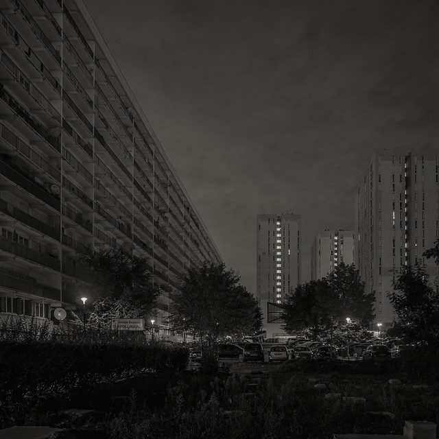 The dark square