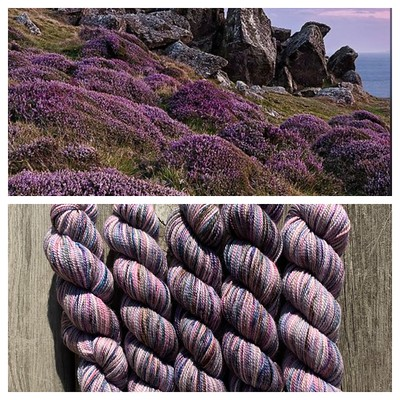 The special LYS Day Koigu Collector's Colour Moors of Scotland!