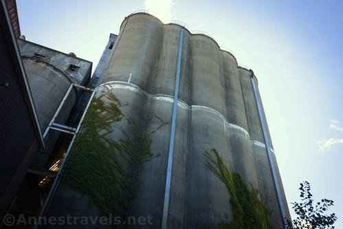 The old silos, Sodus Point, New York